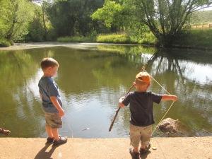 fishing for crawfish